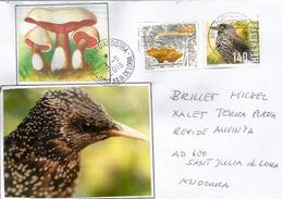 Swiss Nature: Oiseau Casse-Noix & Champignons ,année 2014, Sur Lettre Adressée Andorra Avec Timbre à Date Arrivée - Switzerland