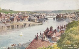 AP06 Whitby From Spion Kop By Brian Gerald - Whitby