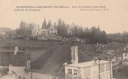 BUSSIERES LES BELMONT - BELLE CARTE D'UNE VUE DU CHATEAU ( COTE SUD ) ET ROUTE DE CORGINON - - France