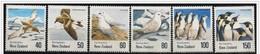 Nuova Zelanda/New Zealand/Nouvelle-Zélande: Petrello, Pinguino, Petrel, Penguin, Pétrels, Pingouin - Fauna Antartica