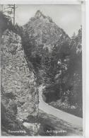 AK 0021  Semmering - Adlitzgraben / Verlag Ledermann Um 1929 - Semmering