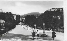 AK 0021  Ljubljana - Tivolski Park Um 1940-50 - Slowenien