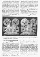 DECOUVERTE ARCHEOLOGIQUE En COLOMBIE   1895 - Archaeology