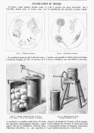 LA CONSERVATION Du BEURRE  1895 - Other Collections