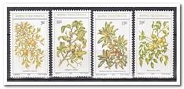 Bophutswana 1980, Postfris MNH, Wild Fruit - Bophuthatswana