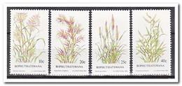 Bophutswana 1984, Postfris MNH, Grasses, Plants - Bophuthatswana