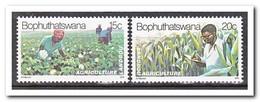 Bophutswana 1979, Postfris MNH, Agriculture, Plants - Bophuthatswana
