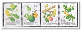Bophutswana 1991, Postfris MNH, Wild Fruit - Bophuthatswana