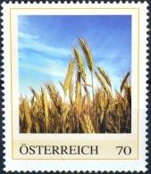 SPECIAL EDITION AUSTRIAN POST - E135 Bier, Beer, Biere, Cerveza, Bier Brauen, Gerste, Getreide, AT 2013 ** - Österreich