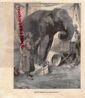 RARE GRAVURE ANCIENNE DRESSEUSE  ELEPHANT- XIX E - LA PRINCESSE BENGALI - - Estampes & Gravures
