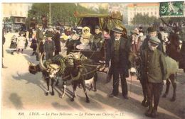 Lyon La Place Bellecour La Voiture Aux Chèvres - Lyon