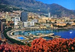 Principato De Monaco - Le Port Et Monte-carlo - Formato Grande Viaggiata – E 7 - Monaco