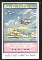 AK Tamise, Ville De Tamise, Aéro Club De Belgique, Wasserflugzeuge Im Flug Und In Der Landung - Belgium