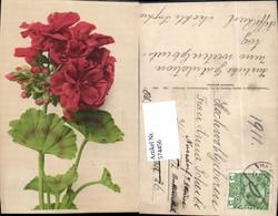 574456,Blumen Botanik Rosen Pub Martin Rommel & Co. 592 - Botanik