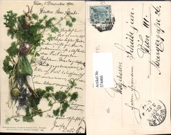 574466,Blumen Botanik Jagd Jäger Gewehr Wild Pub Martin Rommel & Co. 525 - Botanik