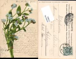574465,Blumen Botanik Pub Martin Rommel & Co. 514 - Botanik