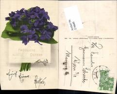 574449,Blumen Botanik Ostern Pub Martin Rommel & Co. 624 - Botanik