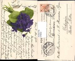 576032,Botanik Veilchen Pub Martin Rommel Stuttgart 521 - Botanik