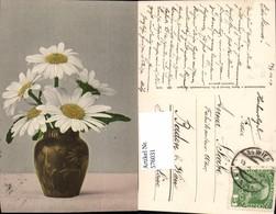 576031,Botanik Gänseblümchen Pub Martin Rommel Stuttgart 520 - Botanik
