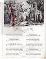 GRAVURE ANCIENNE FABLE LA BESACE - JEAN DE LA FONTAINE- RARE - ELEPHANT-OURS- LION-GIRAFE-SINGE - Estampes & Gravures