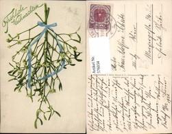 576034,Botanik Weihnachten  Pub Martin Rommel Stuttgart 828 - Ohne Zuordnung