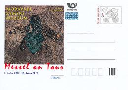 "Rep. Ceca / Cart. Postali (Pre2012/02) Mostra ""Messel On Tour"" - Scarabeo Di Fosil - Altri"