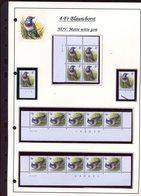 Belgie 2321  Novarode Buzin Vogels Birds Feuille De Collection Numéro De Planche Plaatnummer Drukdatum - 1985-.. Pájaros (Buzin)