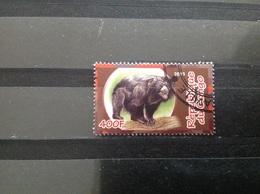 Congo-Brazzaville - Dieren (400) 2010 - Congo - Brazzaville
