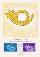 D34884 CARTE MAXIMUM CARD FD 1973 NETHERLANDS - EUROPA CEPT - TWO STAMPS CP ORIGINAL - Europa-CEPT