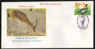 India  2007  Chinkara Deer  Ajmer  Special Cover.  # 68210  Inde Indien - Game