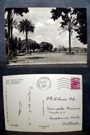 (FG.G09) ROMA - PIAZZALE DEL PINCIO - Places & Squares