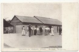 "British Guiana Guyana Rice Factory  "" Broomlands "" Mahaicony The Daily Chronicle Post Card Demerara - Cartes Postales"