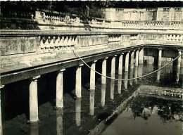 040918B - PHOTO 1959 -  30 NIMES Jardin De La Fontaine Bains Romains - Nîmes