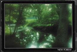 INGHILTERRA - BROCKENHURST - NEW FOREST - FORMATO GRANDE 17X12 - VIAGGIATA 1989 - Inghilterra