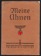 3565 - Ahnenpaß Ahnentafel Schmölln Lübeck Bayerische Ostmark - 3. Reich - 2. WK WW - Documenti Storici