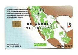 Olanda - Tessera Telefonica Da 115 Units T553 - PTT - Uccelli