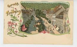 ALLEMAGNE - Gruss Aus TRIBERG - Triberg