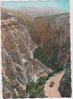 05  Gorges Du Verdon  Corniche Sublime Le Grand Canyon  Vu De La Falaise Des Bauchets - Unclassified