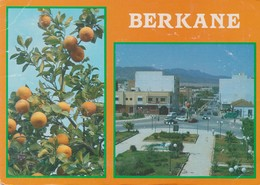 BERKANE - Altri