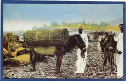CPA Haïti Métier Ane Donkey Marchand Non Circulé - Cartes Postales