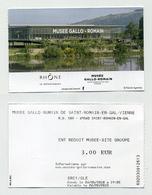 Ticket 2018 - Musée Gallo-romain à Saint-Romain-en-Gal Dans Le Rhône (69) - Tickets D'entrée