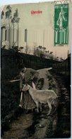 Agriculture - Chevrière  - Elevage Chèvres - Elevage