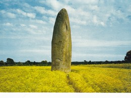 Postcard Dol De Bretagne La Pierre Du Champ Dolent Standing Stone Dolmen Menhir My Ref  B22930 - Dolmen & Menhirs
