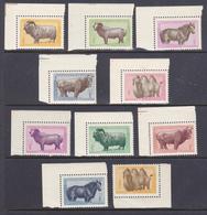 Mongolia 1958 Animali  Diversi Serie Cpl. 12 Val. G.i. MNH** - Mongolia