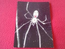 TARJETA TIPO POSTAL POST CARD CARTE POSTALE ARAÑA HAWAIIAN SPIDER HAWAII USA EEUU SPIDERS ARAÑAS ANIMALS VER FOTO/S Y DE - Animales