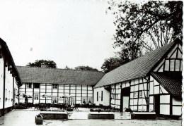 Kelchterhoef  Houthalen   Café Restaurant - Houthalen-Helchteren