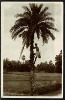 RB 1220 - Real Photo Ethnic Postcard - A Toddywallah - Ceylon - Sri Lanka - Sri Lanka (Ceylon)