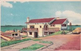 TABERNA Y VIVERO MARISKONEA, ESPECIALIDAD EN PESCADOS Y MARISCOS. PUNTA DEL ESTE. CIRCA 1950's - BLEUP - Hotel's & Restaurants