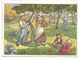 CHROMO - BISCUITS PERNOT - La Récolte Des Pommes - Pernot