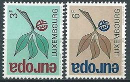 1965 EUROPA LUSSEMBURGO MNH ** - EV-4 - Europa-CEPT